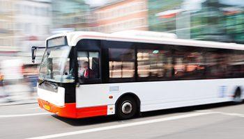 אוטובוסים-קטן